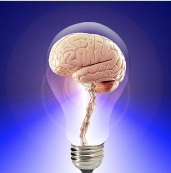 Brain & Exercise