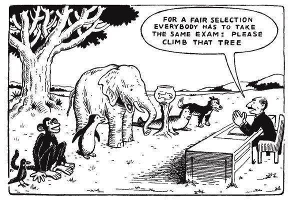 Climb that tree