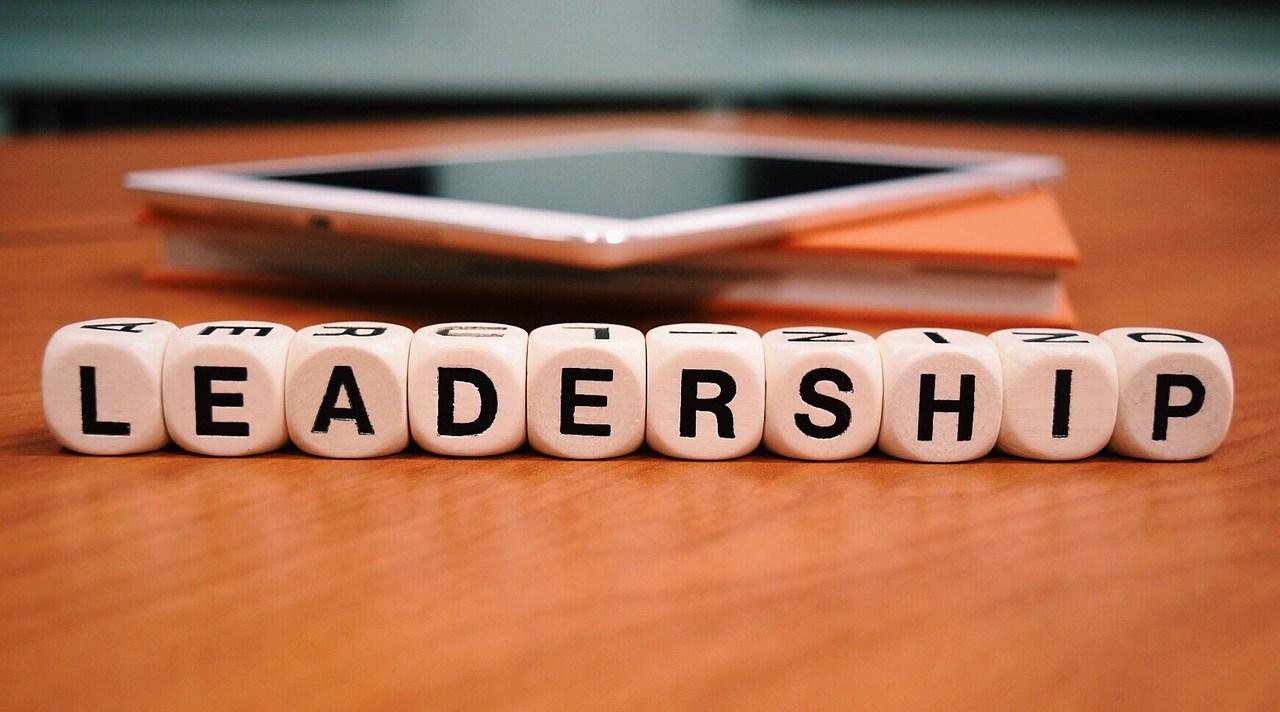 Leadership Cubes